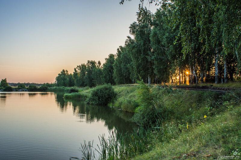 Рассвет на пруду