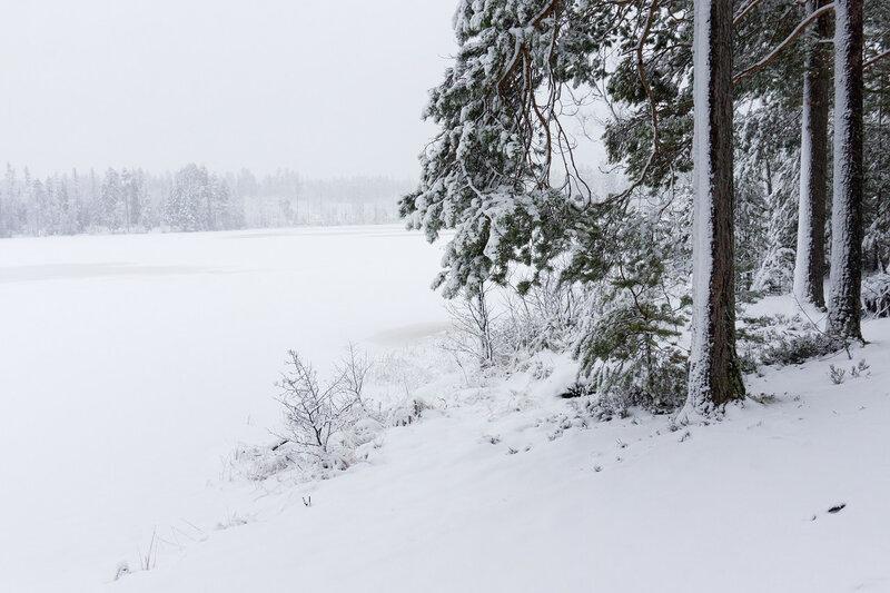 озеро ветреное на карельском перешейке зимой