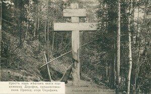 Саровская пустынь. Крест над местом келии подвижника Дорофея