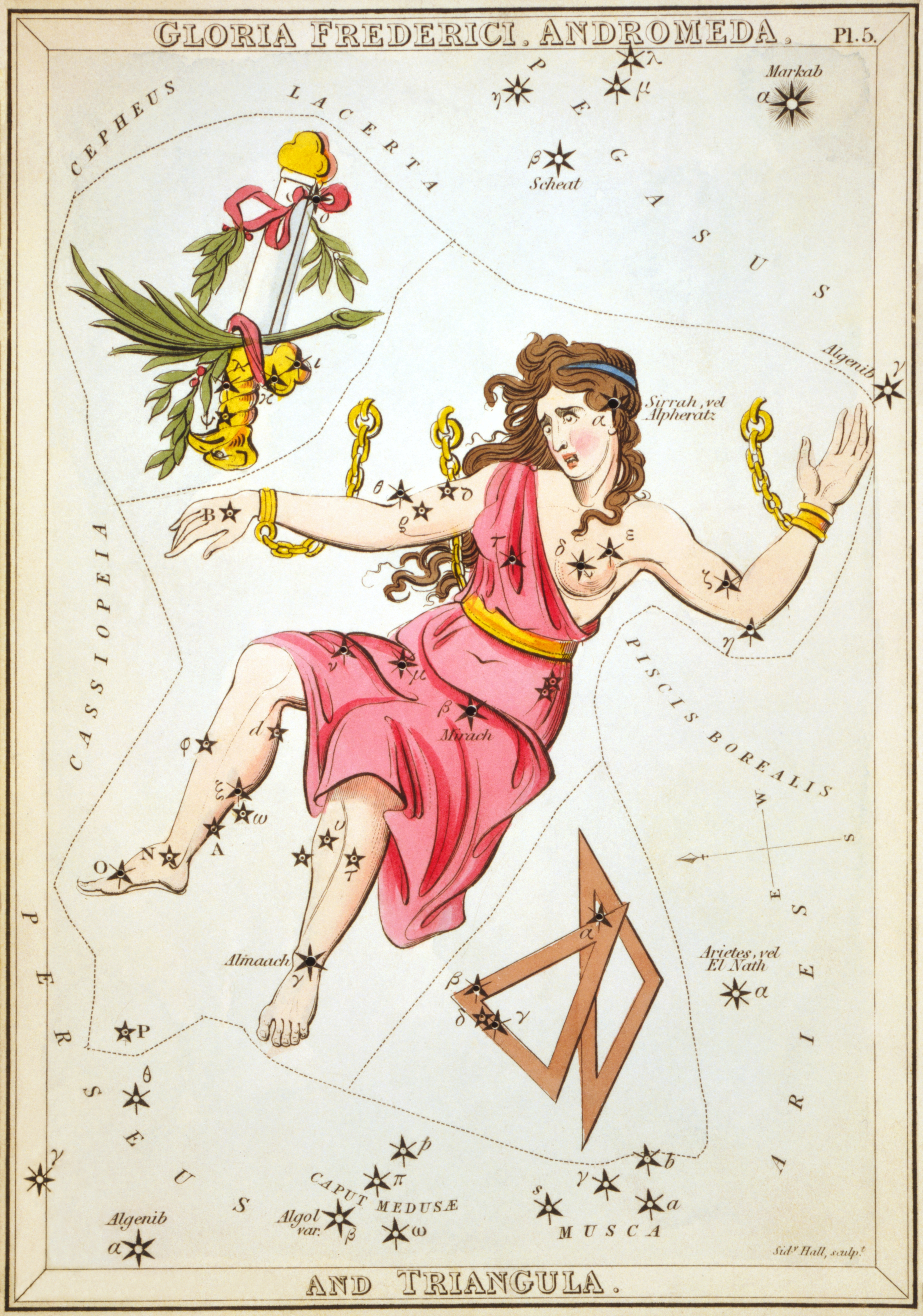 Карточка №5: Слава Фридриха II, Андромеда, и Треугольники