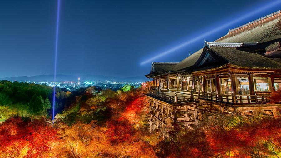 Почему стоит посетить Японию