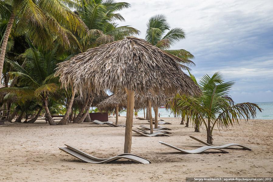 24. На Саоне совершенно нет водорослей, т.к. остров находится в акватории Карибского моря и оке