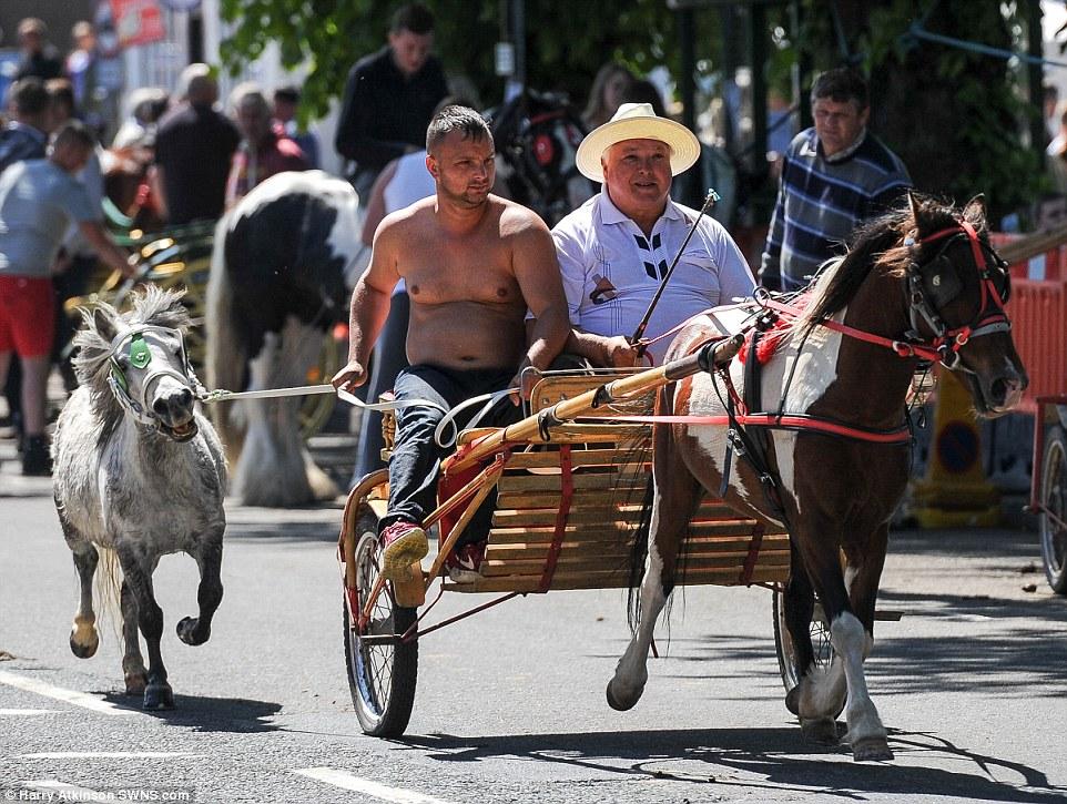 Мужчины на двуколке волокут за собой маленькую лошадку.