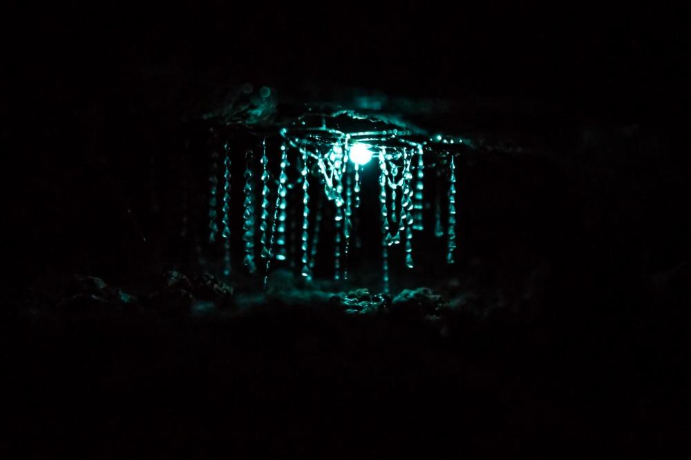 Пещеры светлячков Вайтомо.