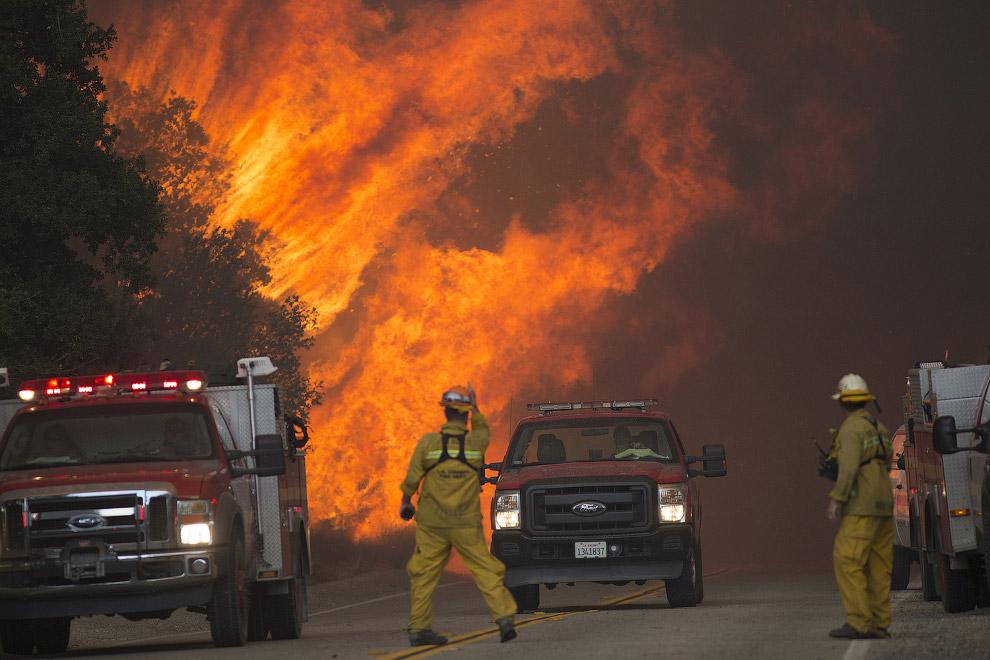 7. Лесной пожар в Калифорнии 15 ноября 2008. (Фото David McNew):