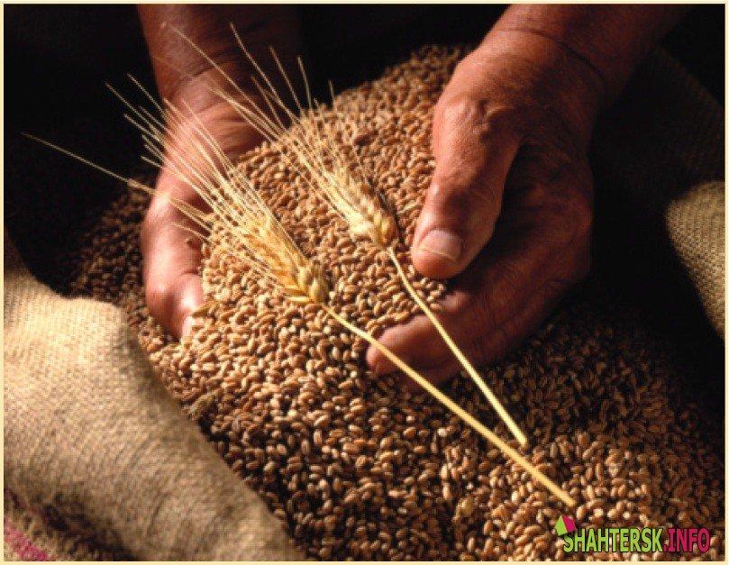 Аграрии Украины намолотили 37,6 млн тонн зерна
