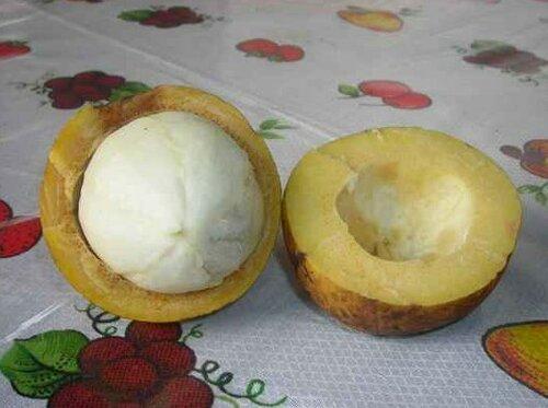 Малоизвестные фрукты