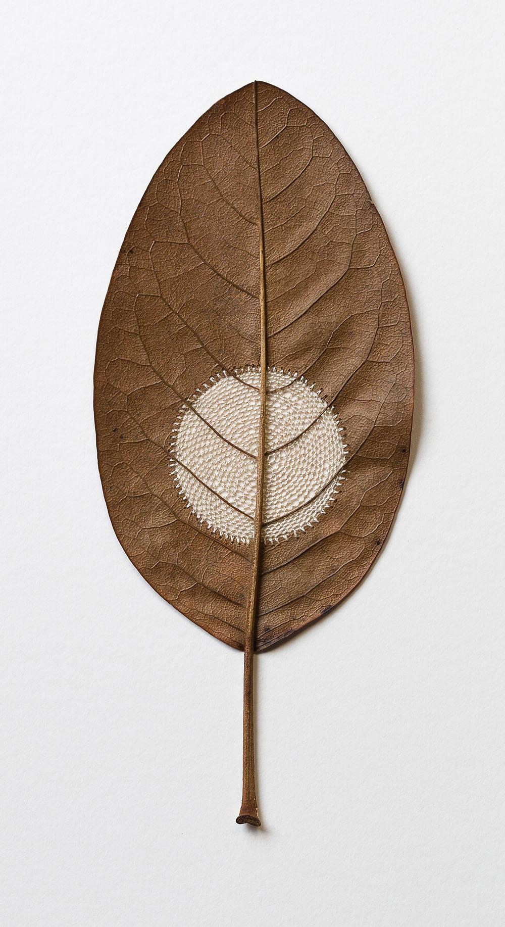 Moon Vlll. 35.8 H x 22 W cm. Magnolia leaf, cotton yarn.