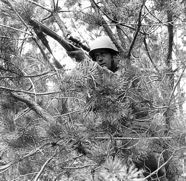 Снайпер Ф.И.Федоров в засаде. 28 немцев. ЮЗФ, июль 1941.jpg