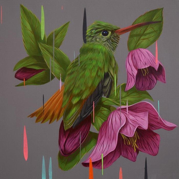 Рисованные птицы Франк Гонсалес / Frank Gonzales