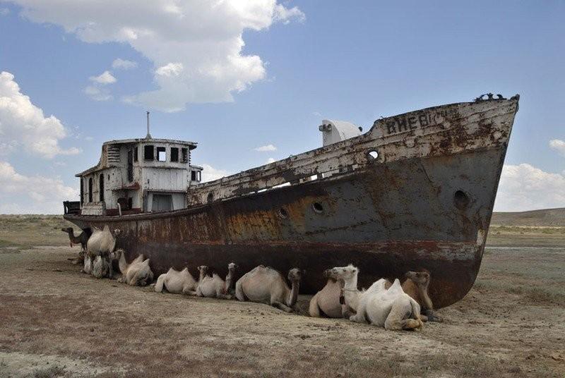 0 182bfd d0f65eea orig - На мели: фото брошенных кораблей