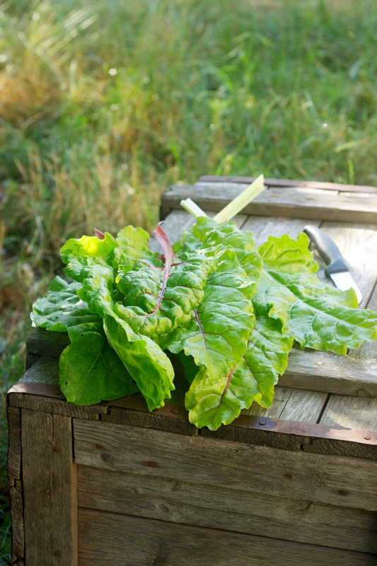 Chard leaves and a knife on a wooden box