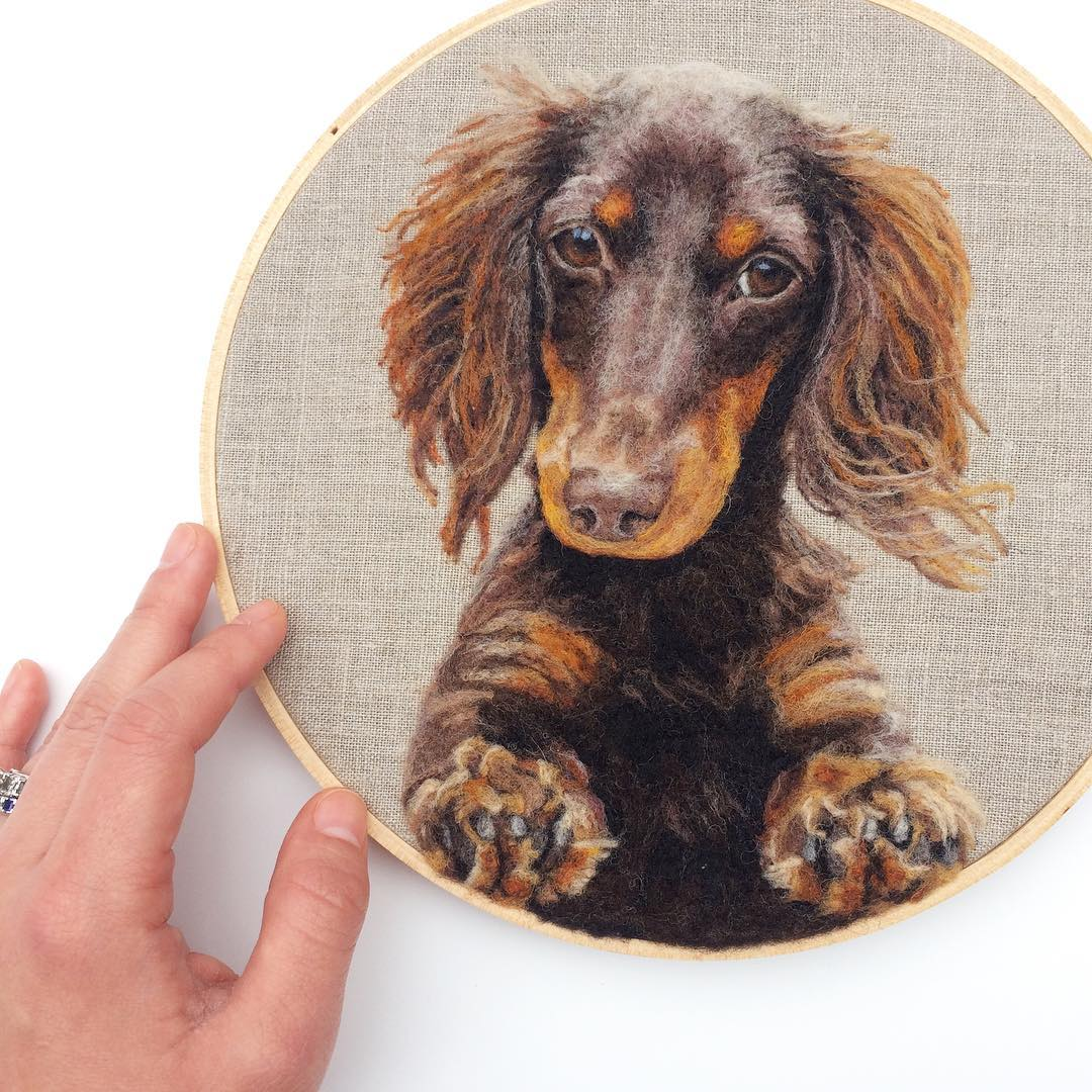 Incredibly Lifelike Felt Paintings of Pets and Plants by Dani Ives (8 pics)