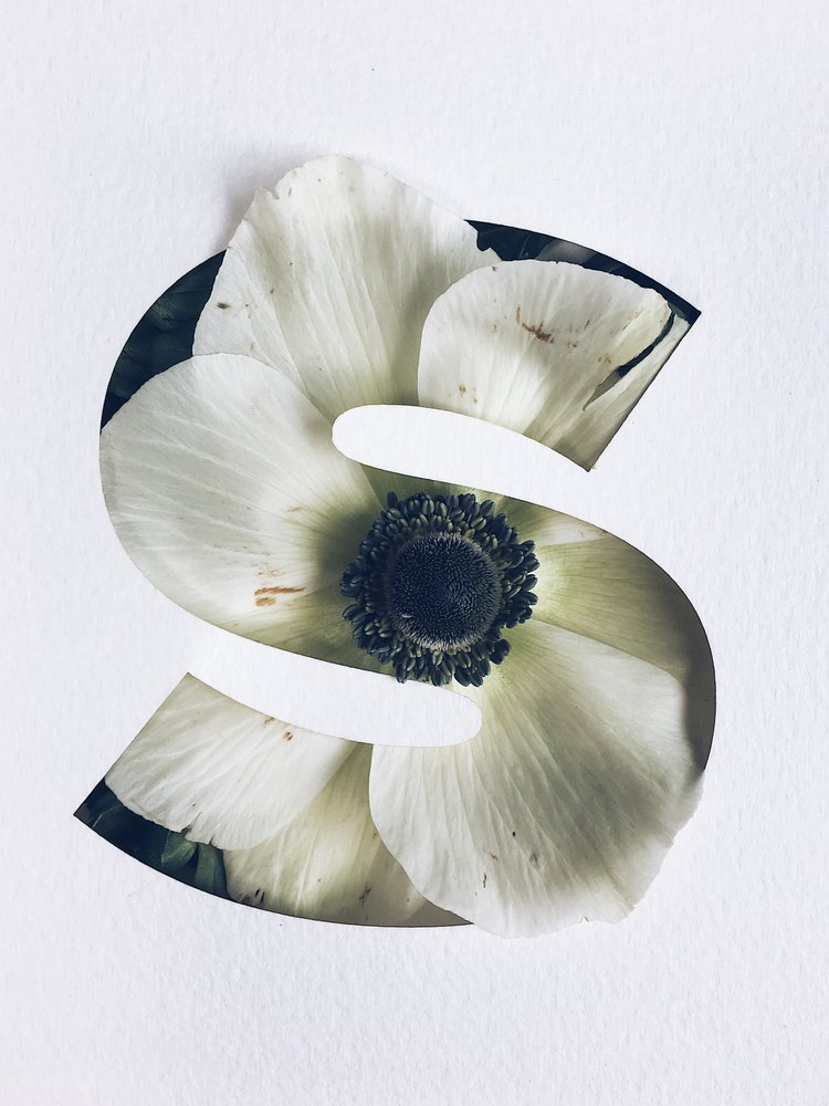 Stunning Flower Typography Project by Julia Losfelt (6 pics)