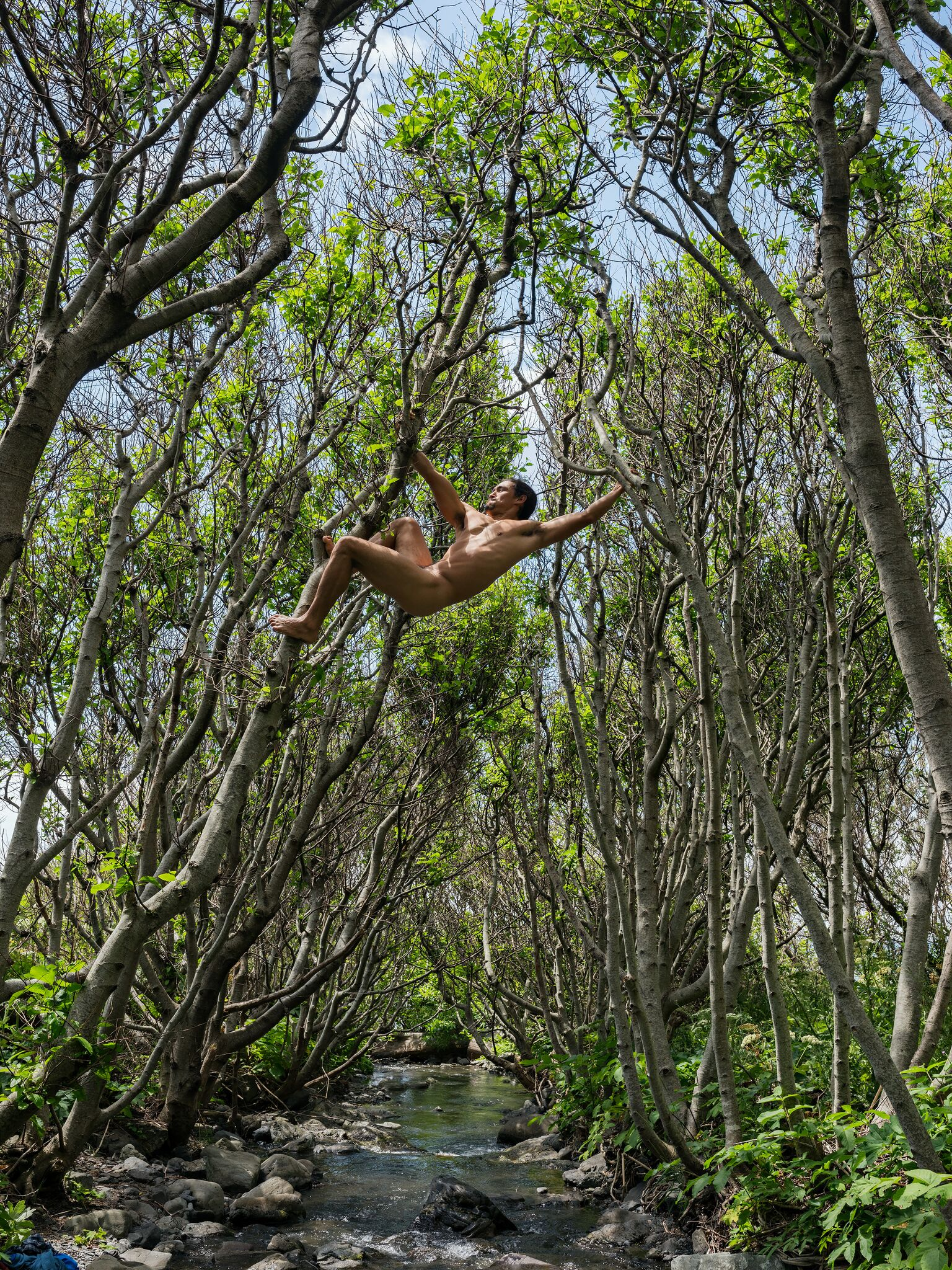 - Matt Swinging between Trees, Lost Coast, California © Lucas Foglia. Courtesy of Michael Hoppen Ga