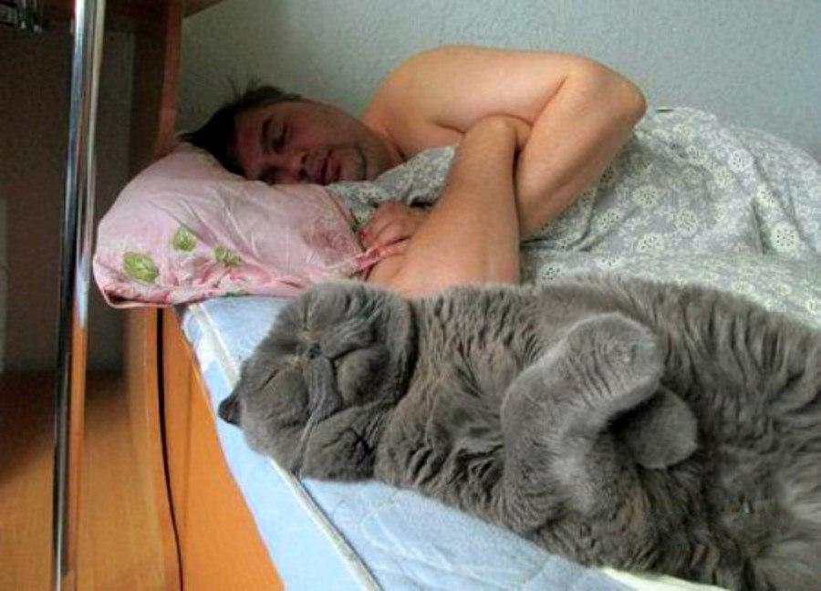 Как спать и высыпаться.jpg