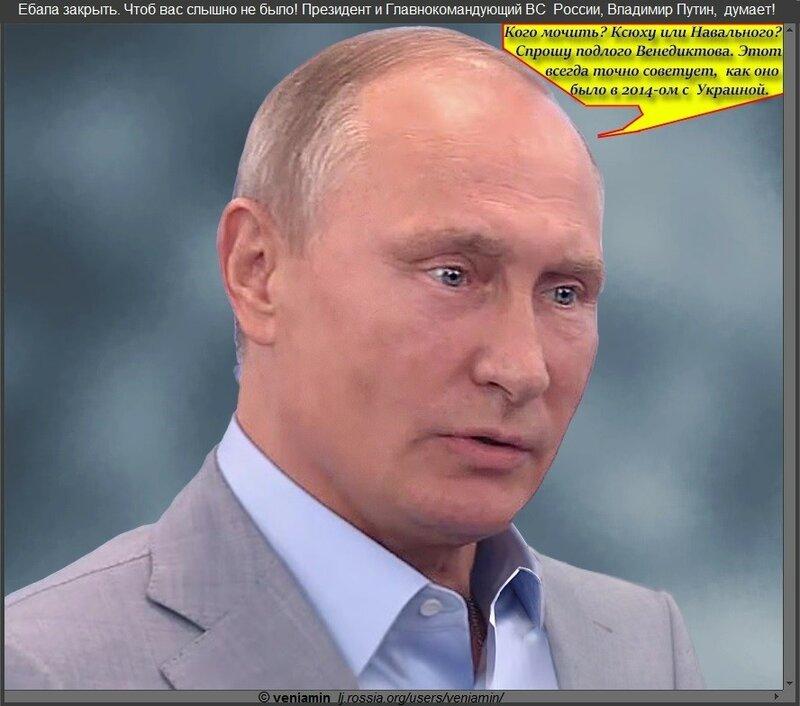 Президент Владимир Путин  думает. 21-10-2017( портретка, рамка)