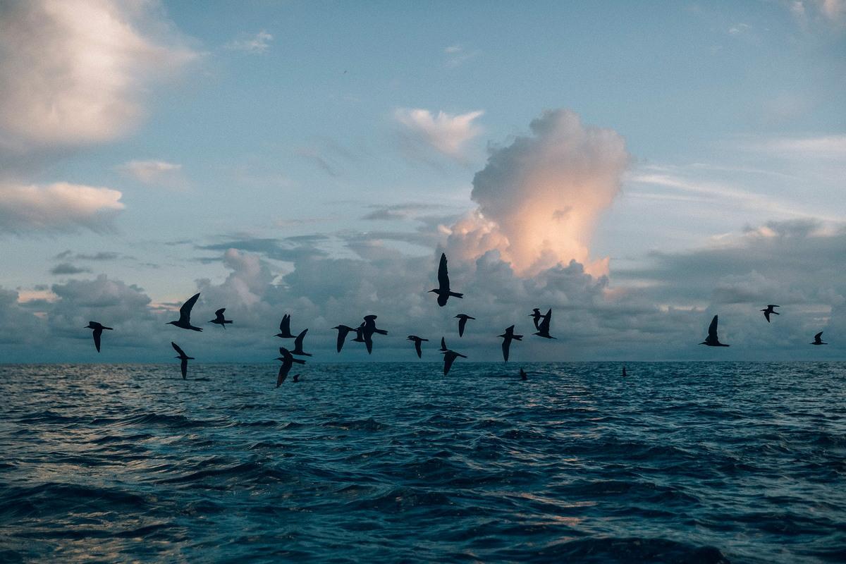 Токелау — самая удаленная страна в мире