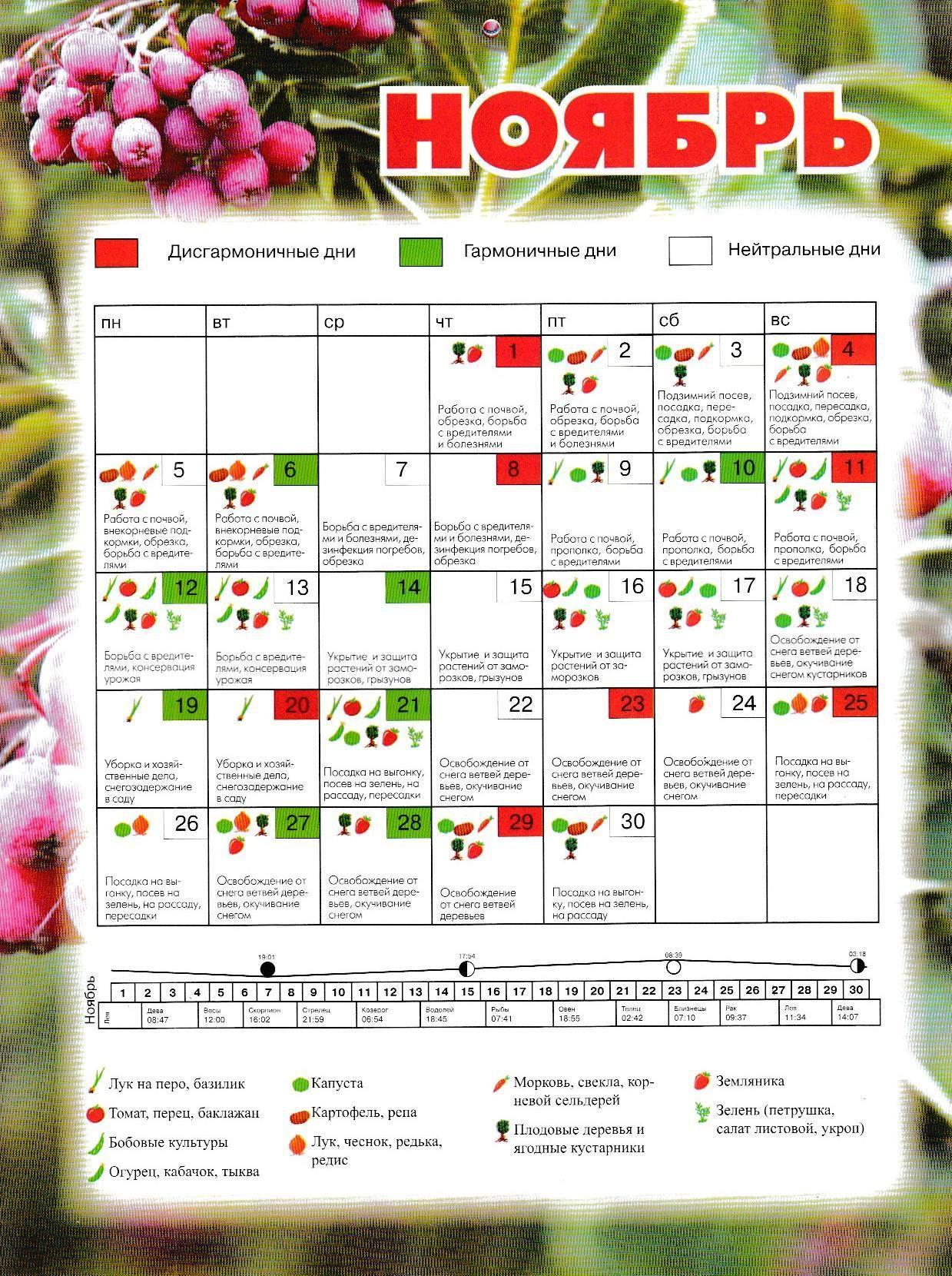 Диета по лунному календарю на октябрь