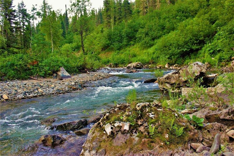 IMG_6222.JPG На изгибе реки