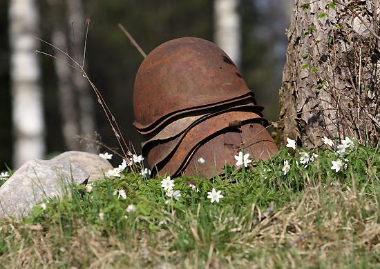 11 ноября. День памяти (Окончание Первой мировой войны). Память
