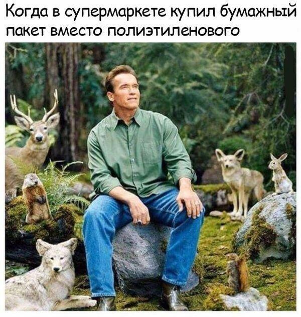 "0 17b129 7a9af63f XL - Подборка веселых фото ""Здравствуй Зимушка-Зима"""
