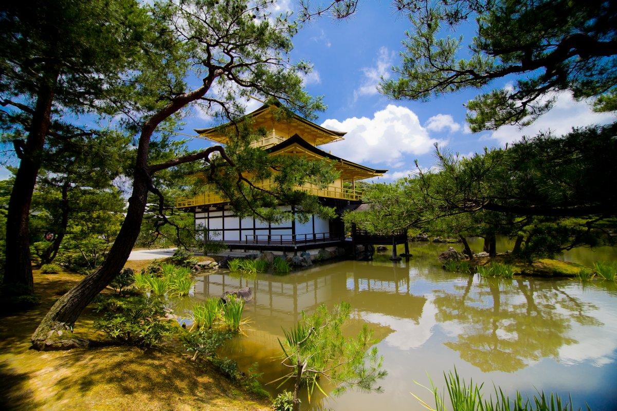 Слияние с окружающей средой — один из старейших идеалов в архитектурном искусстве. Кинкаку-дзи, или