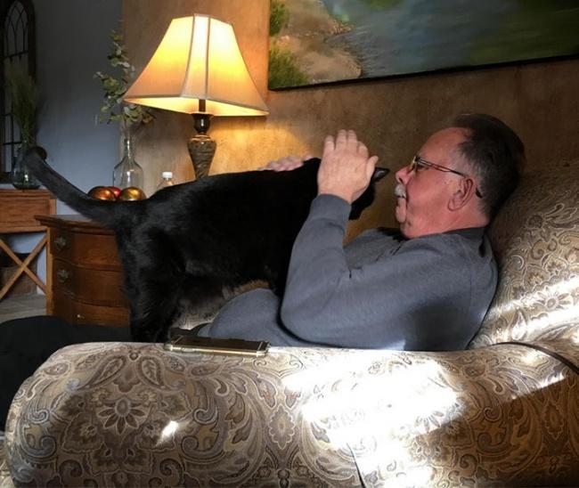 © Spinnak3r/reddit      11. «Мой отец когда-то говорил, что ему ненужна собака»