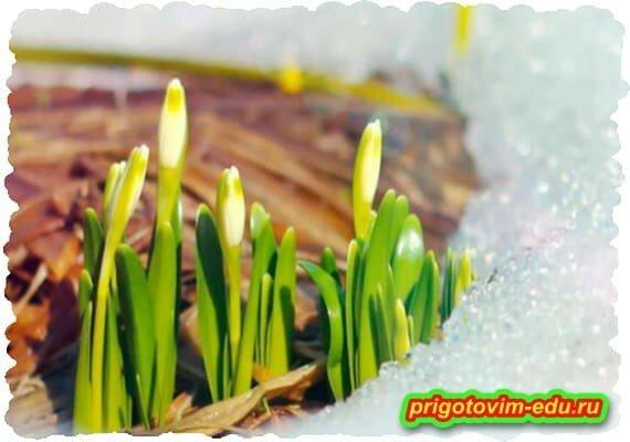 Подготовка огорода к сезону в марте
