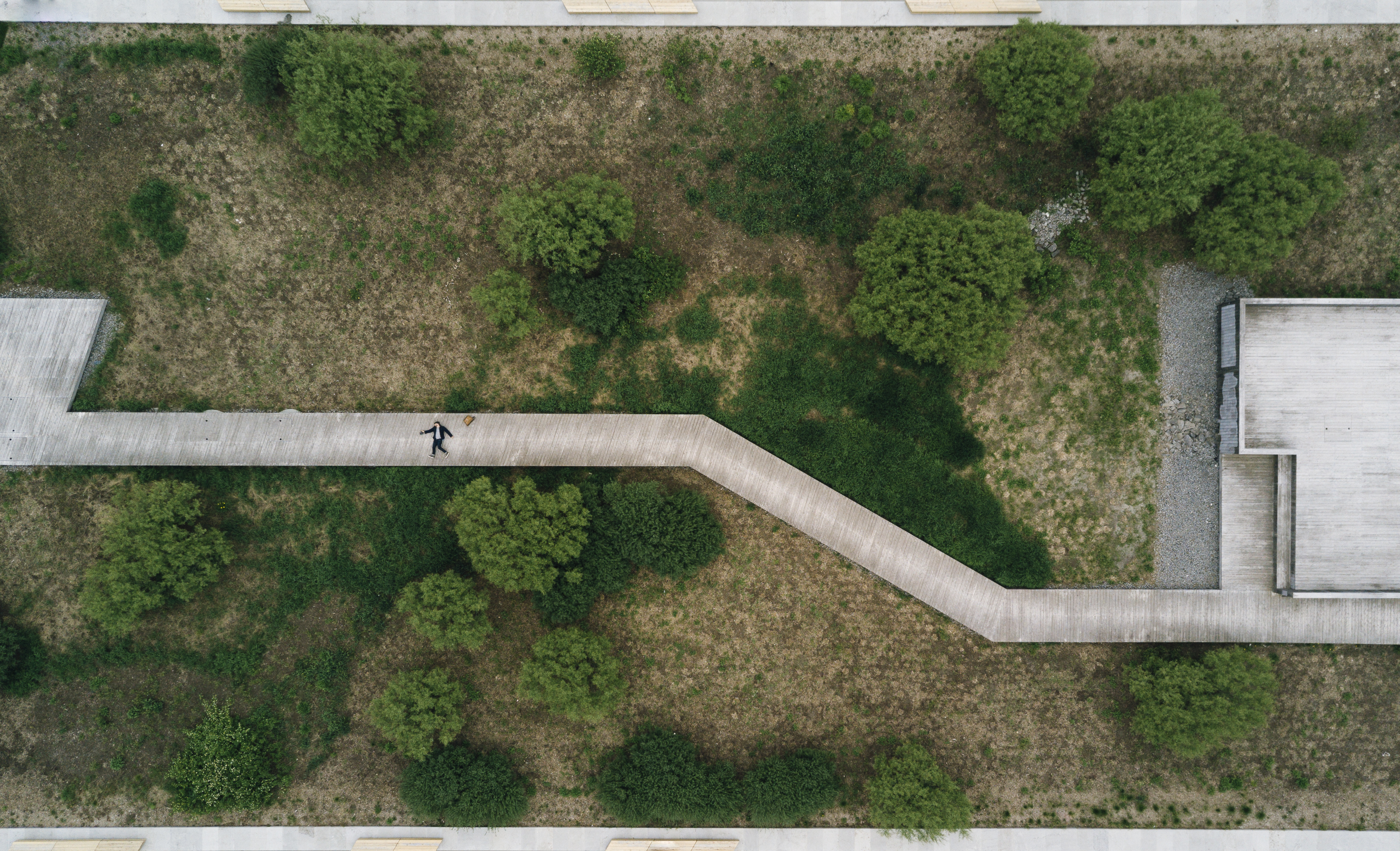 Symmetric Top-Down Photographs Inspired by Nintendo Games of the 80's
