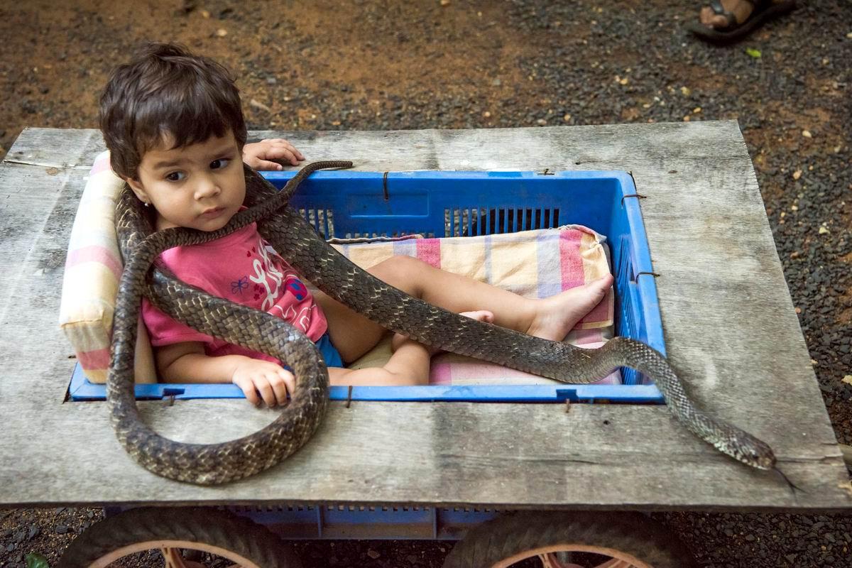 А я тут со змейкой играю: Домашние развлечения индийских девочек
