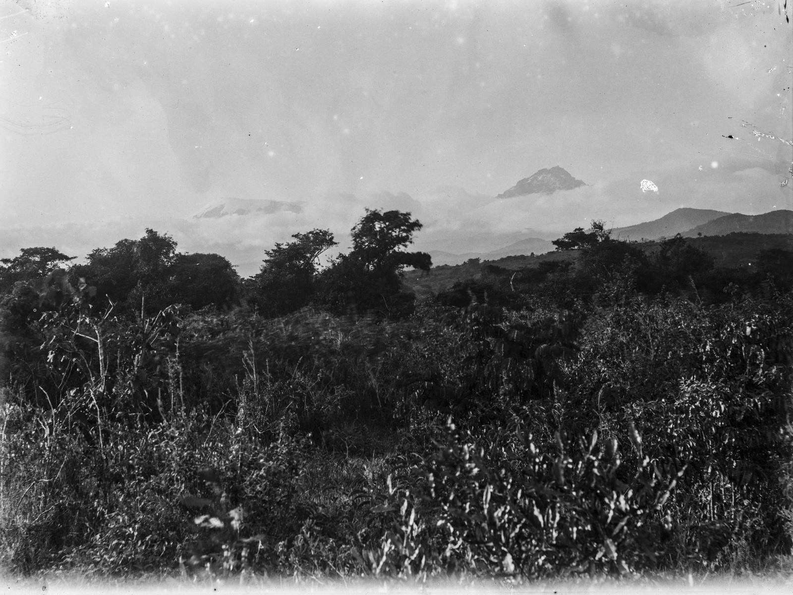 94. Вид на пейзаж у подножия горы Килиманджаро