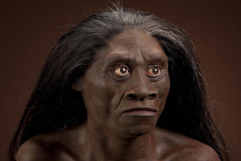1448019489_homo-floresiensis.jpg