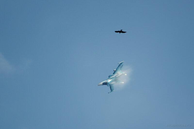 Сухой Су-34 (RF-95857 / 42 красный) ВКС России 1810_D806212