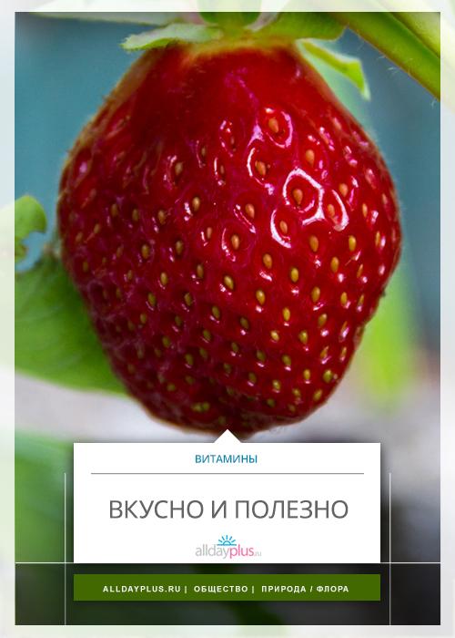 Вкусно и полезно )