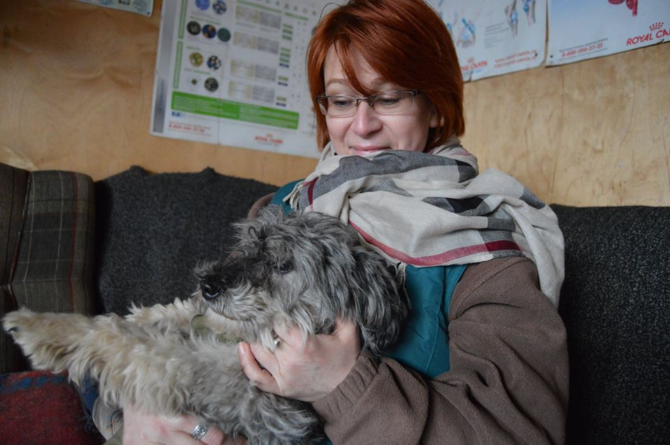 Бони собака из приюта догпорт