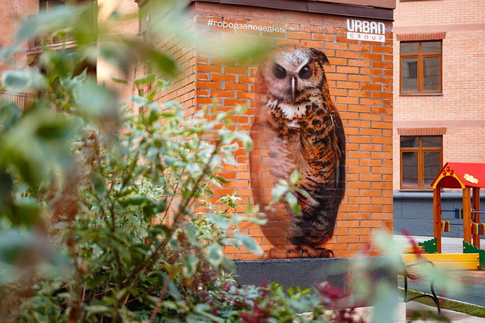 Граффити на фасадах зданий напоминает о важности симбиоза человека и природы. Поскольку самому Андре