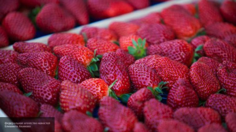 Грязная дюжина— ТОП-список отравленных пестицидами продуктов