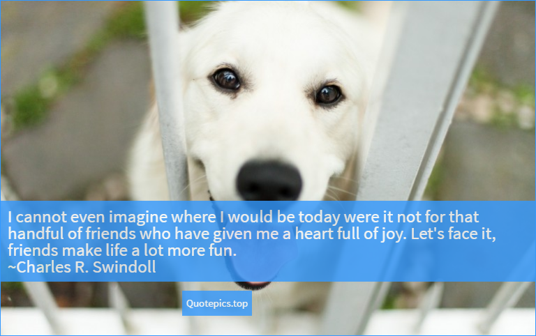 I cannot even imagine where I would be today were it not for that handful of friends who have given me a heart full of joy. Let's face it, friends make life a lot more fun. ~Charles R. Swindoll