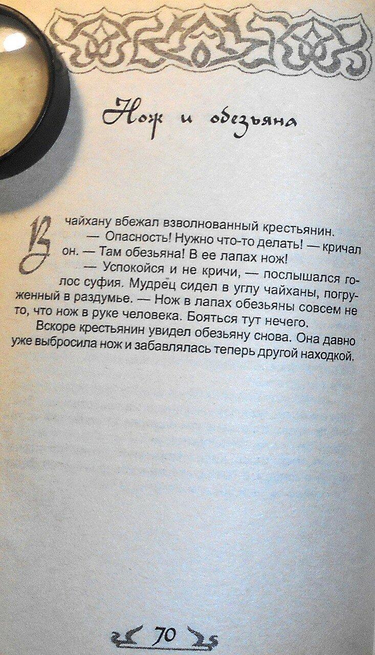 Если ты не ОСЁЛ, или как узнать СУФИЯ (59).JPG