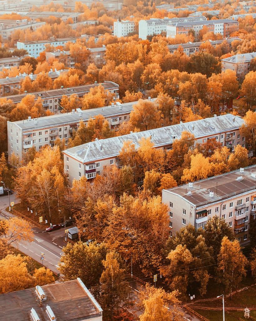 autumn0021-59e7b1ff04140__880.jpg