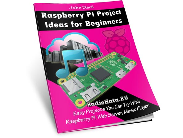 John Dari. Raspberry Pi Project Ideas for Beginners