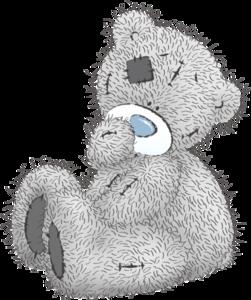 bears Teddy