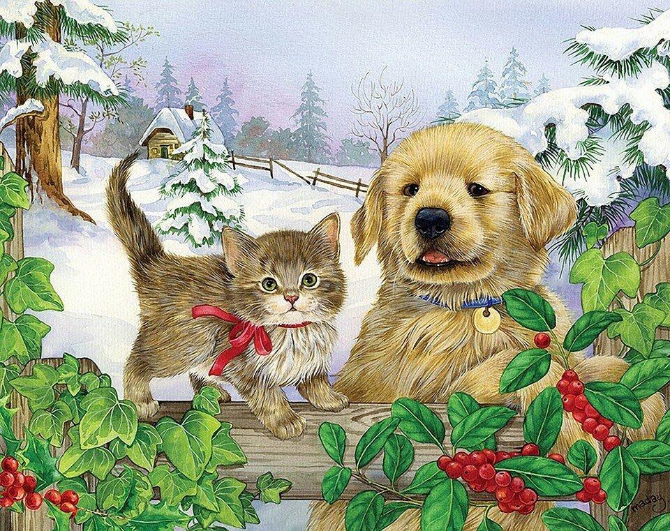 Котёнок и щенок.jpg