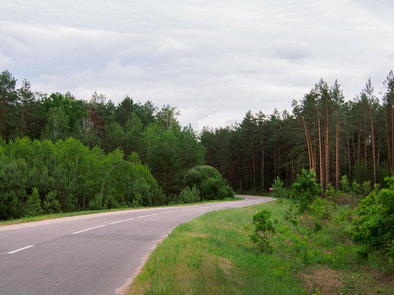 За поворотом Гомельская область.