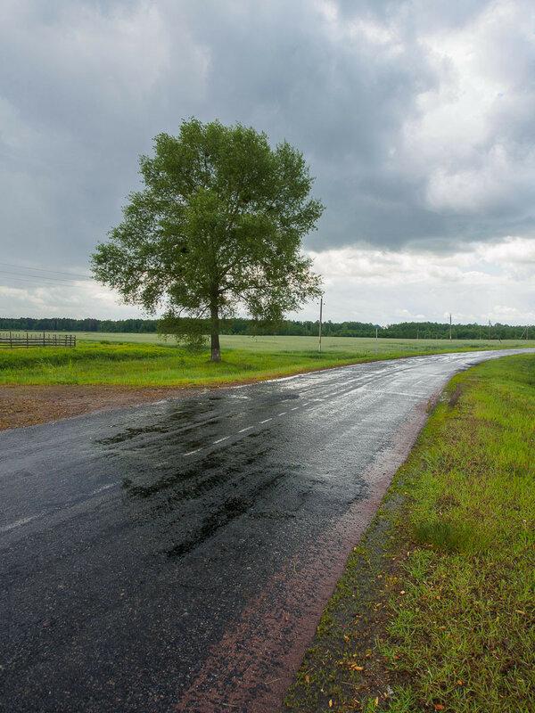 Наконец нас вместе с дорогой поливает дождём.