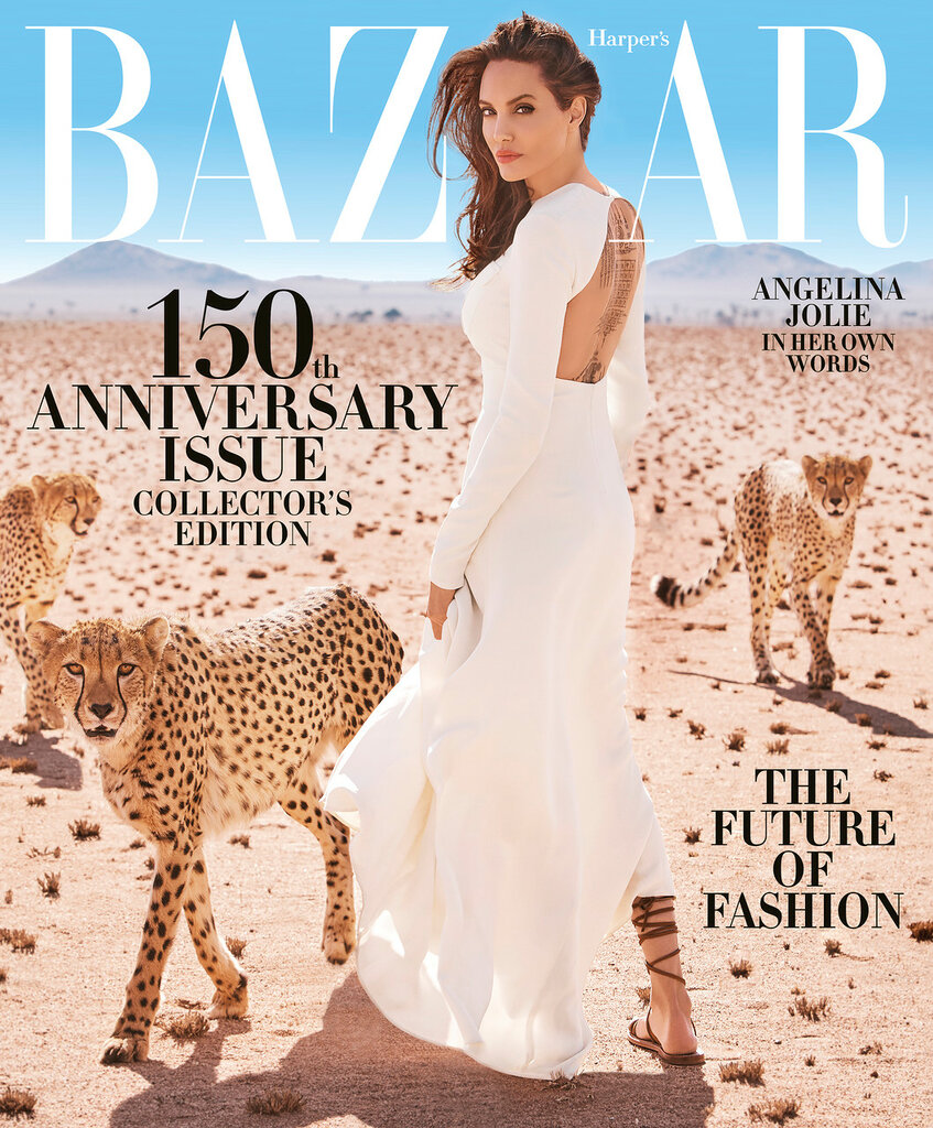 harpers_bazaar_november_2017_cover.jpg