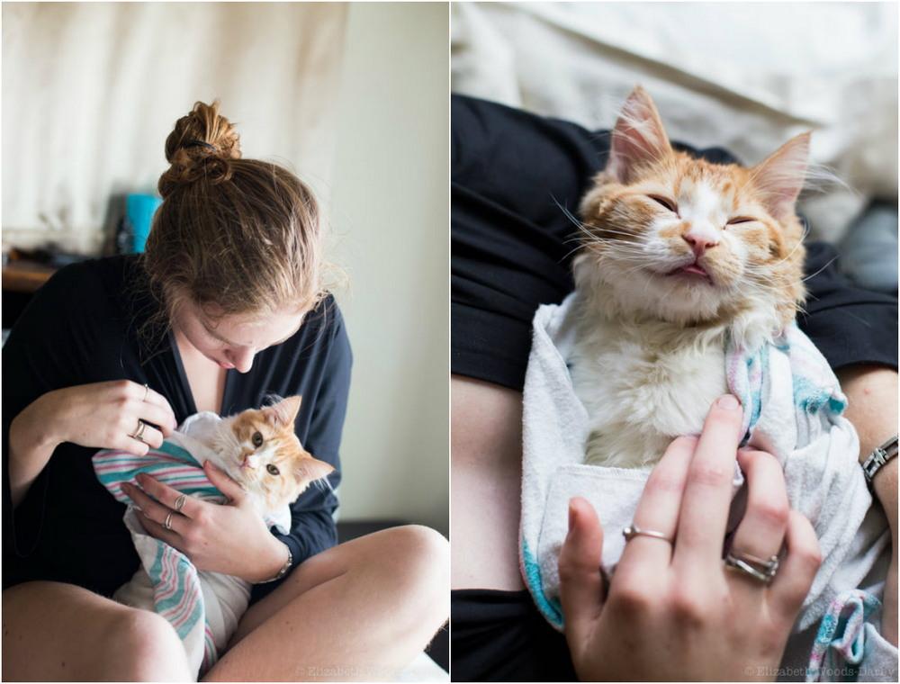 Шуточная фотосессия рождения кота