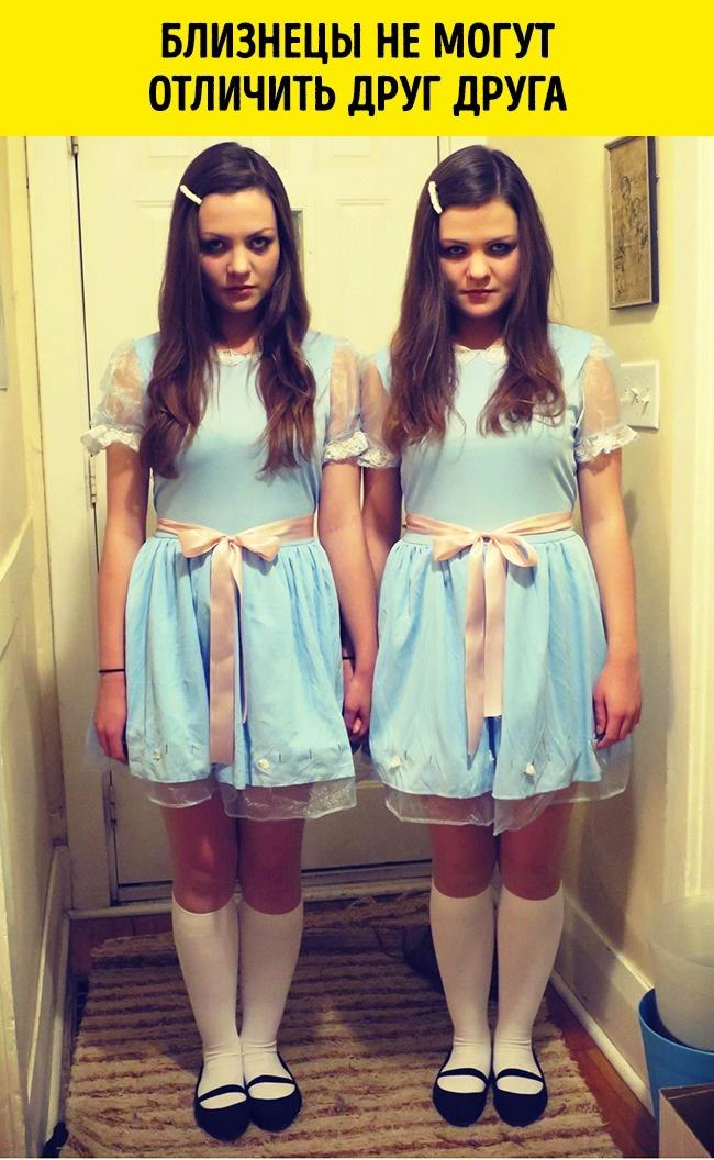© imgur     Входе этого исследования выяснилось, что однояйцовые близнецы— те, которые