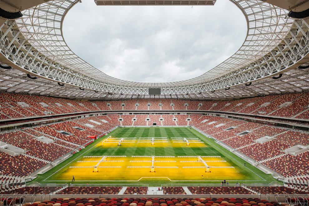 22. Специальная система Stadium Grow Lightning Concept позволяет создать условия, необходимые для по